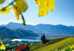 Agriturismo in Alto Adige – piscina14